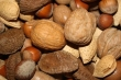 nuts_and_seeds_image_title_9snrs